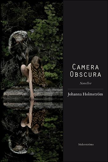 Johanna Holmstrom: Camera Obscura